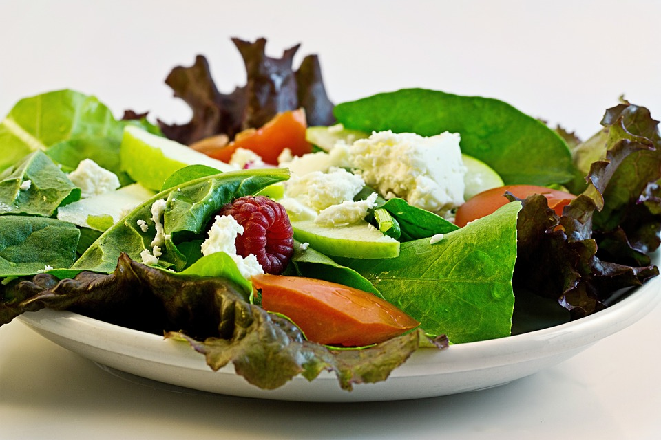 salad-374173_960_720[1]