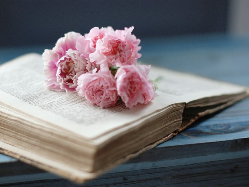 95346__book-and-flowers_p[1]